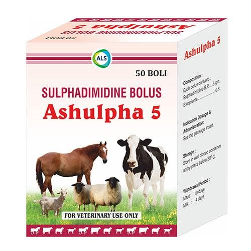 ASHULPHA 5 1